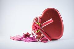 Czerwona miłość z wysuszonymi kwiatami Zdjęcie Stock