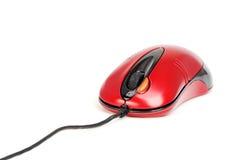 Czerwona mysz Obraz Royalty Free