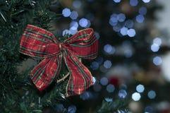 Czerwona pętla na drzewie z przestrzenią pisać Bożenarodzeniowej wiadomości fotografia stock
