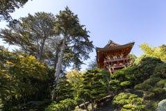 Czerwona pagoda i drzewa w japończyku uprawiamy ogródek Zdjęcia Royalty Free