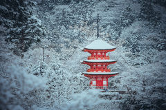 Czerwona pagoda przy Kiyomizu-dera świątynią z drzewem zakrywał białego śnieżnego tło Obraz Stock
