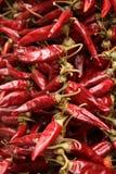 Czerwona papryka Fotografia Stock