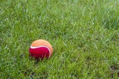 Czerwona piłka Zdjęcia Stock