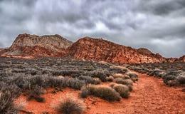 Czerwona piasek ścieżka Obraz Stock