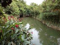 Czerwona pobliska rzeka Obrazy Royalty Free
