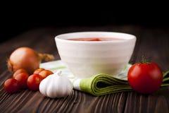 Czerwona pomidorowa polewka Fotografia Stock