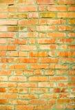 Czerwona przerwy ściana Zdjęcia Stock