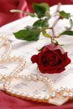 czerwona róża perły? Fotografia Stock