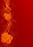 czerwona róża tło ilustracji