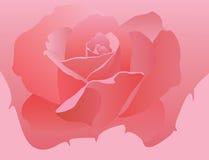 czerwona róża ilustracja wektor