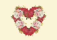 czerwona róża ilustracji