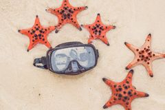 Czerwona rozgwiazdy i pikowania maska na plaży obrazy stock