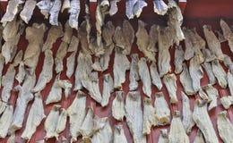 Czerwona rybaka ` s chałupa z suchym rybim Lofoten Obraz Stock