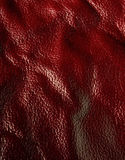 czerwona skóra Zdjęcie Royalty Free