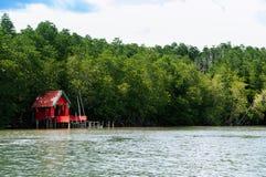 Czerwona spirytusowa świątynia w Tajlandia bagna lasu tropikalnych namorzynowych lus fotografia royalty free