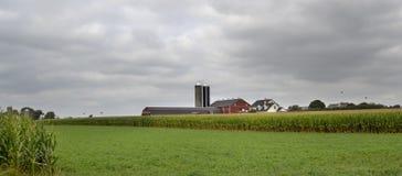 Czerwona stajnia w Amish kraju Obrazy Stock