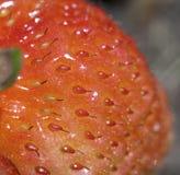 czerwona truskawka Zdjęcia Royalty Free