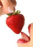 czerwona truskawka Zdjęcia Stock