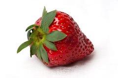 Czerwona truskawka na białym textured tle Fotografia Royalty Free