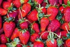 Czerwona truskawka tła zdrowy odżywianie Zdjęcia Royalty Free
