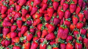 Czerwona truskawka tło tapety jedzenie Obraz Royalty Free