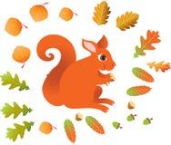 Czerwona wiewiórka z liśćmi Obraz Royalty Free