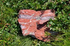 Czerwonawy kamień I trawa obraz royalty free