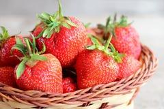 czerwone świeże truskawki Słodkie soczyste truskawki w łozinowym koszu Ogrodowa jagody fotografia zbliżenie Zdjęcie Royalty Free