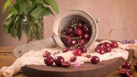 Czerwone świeże wiśnie zbiory