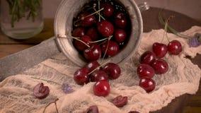 Czerwone świeże wiśnie zbiory wideo