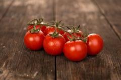 czerwone świeżych pomidorów Fotografia Royalty Free