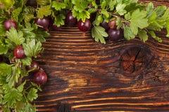 Czerwone agrestowe owoc Obrazy Royalty Free