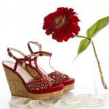 czerwone buty Obraz Stock