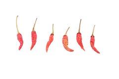 czerwone chillies Zdjęcia Stock