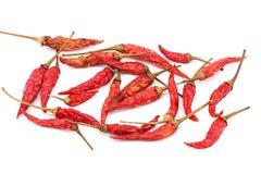 czerwone chillies Fotografia Stock