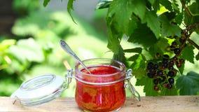 Czerwone dżem mieszanki jagody w szklanym jaron nieociosany drewniany stół outdoors Autentyczny stylu życia wizerunek Sezonowej ż fotografia stock