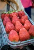 Czerwone duże wielkościowe truskawki w plastikowym pudełku zdjęcia royalty free
