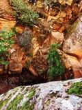 Czerwone falezy - huraganowy Utah Obraz Royalty Free