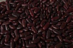 Czerwone fasole, suszą rozrzuconego na drewnianym Fotografia Royalty Free
