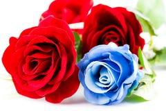 Czerwone i błękitne róże Zdjęcie Stock