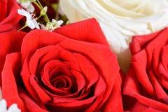 Czerwone i białe róże poślubia bukiet Zdjęcia Royalty Free