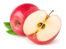 czerwone jabłko odizolowana obraz royalty free
