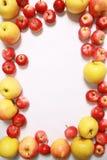 czerwone jabłuszko żółty Zdjęcie Stock