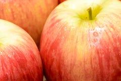 czerwone jabłczane owoc Zdjęcie Stock