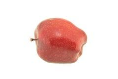 czerwone jabłko odizolowana Fotografia Royalty Free