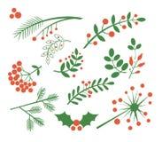 Czerwone jagody, jodła i liście, również zwrócić corel ilustracji wektora ilustracja wektor