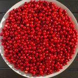 Czerwone jagody na białym talerzu fotografia royalty free