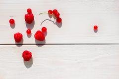 Czerwone jagody na białym tle Zdjęcia Stock