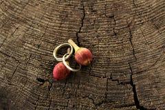 Czerwone jagody na drewnianym tle Zdjęcie Stock
