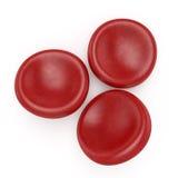 Czerwone komórki krwi Zdjęcie Royalty Free